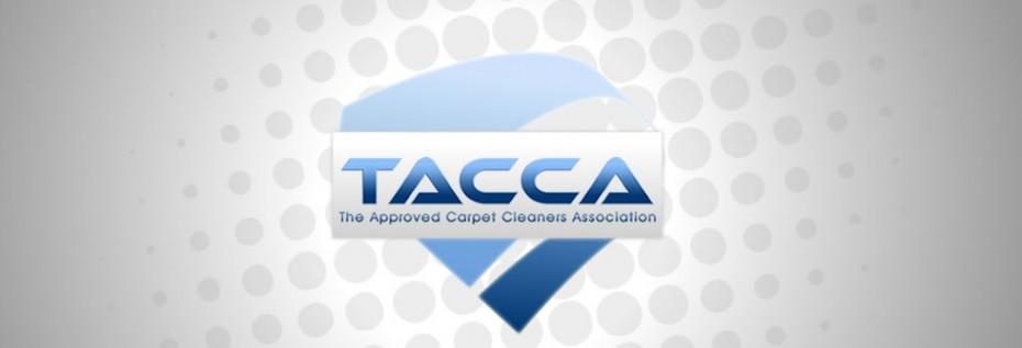 Portfolio BG TACCA - Graphic design for UK trade association